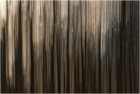 Wald abstract