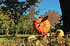 Der seltene Pumpkin Turkey...